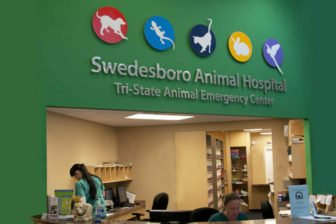 Swedesboro Animal Hospital Front Desk